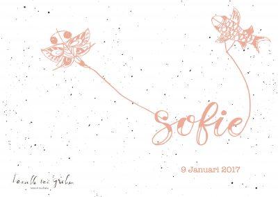 Vliegers Sofie_roze