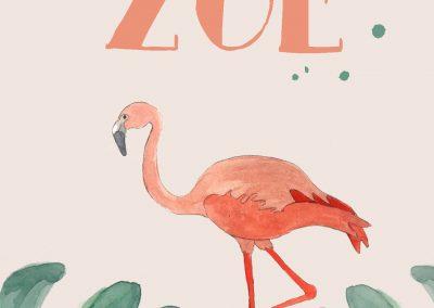 Zoe-Flamingo-2